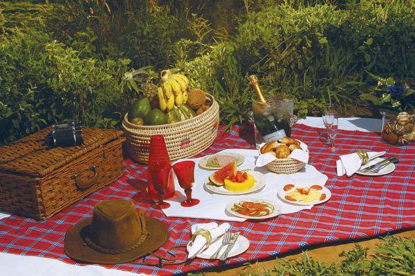 bush-picnic0CD088B2-0EEF-EDD8-ABAB-4F4866521279.jpg